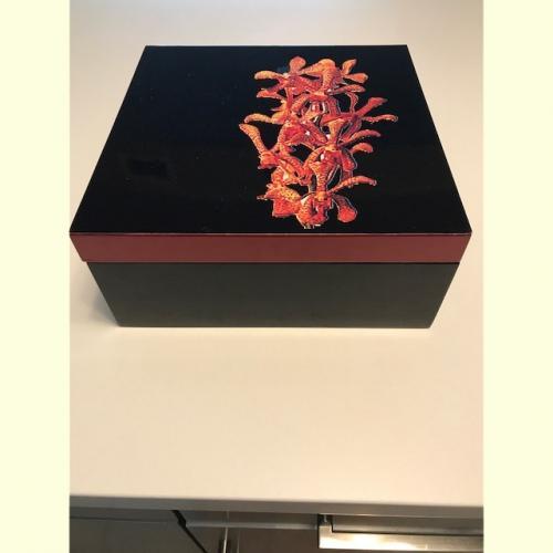 Lacquered Ornamental Shoe Box Organizer